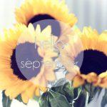 Izgalmas szeptemberi könyvek!